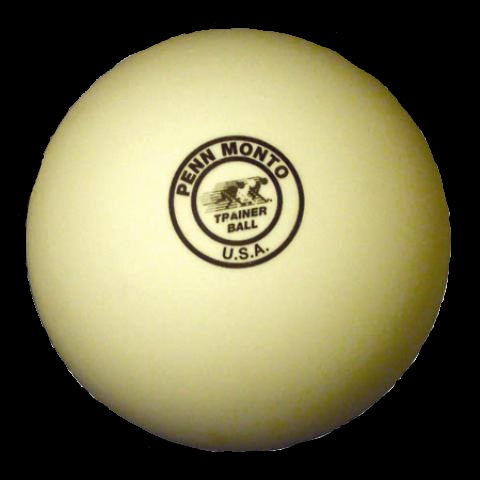 Photo of Penn Monto Trainer Ball